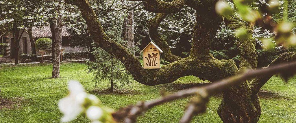Giardino Blitzen con casetta per farfalle su albero in fiore