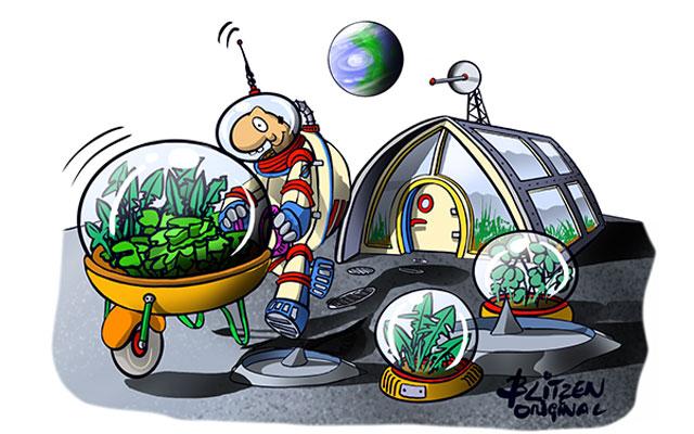 Disegno di una Tartaruga di Terra che coltiva erbe di campo - Blitzen
