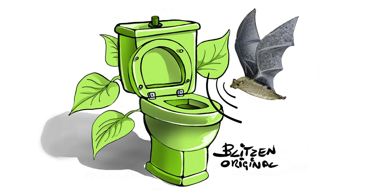 Disegno Blitzen di un water per attirare i pipistrelli