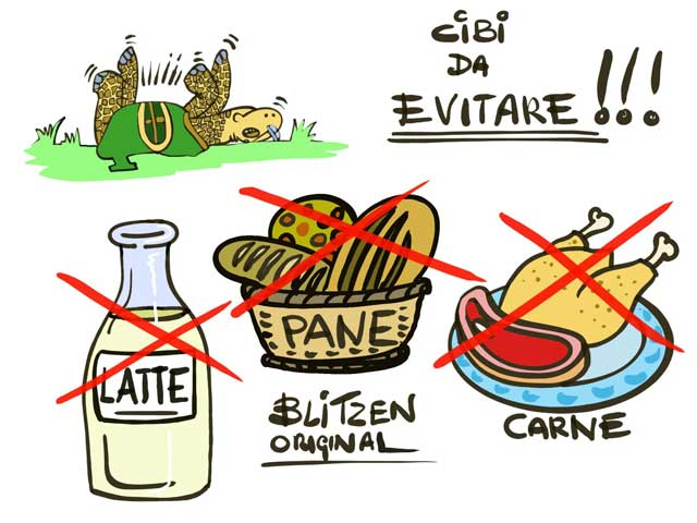 Cosa mangiano le Tartarughe di Terra - Disegno raffigurante i cibi da evitare (pane, latte e carne)