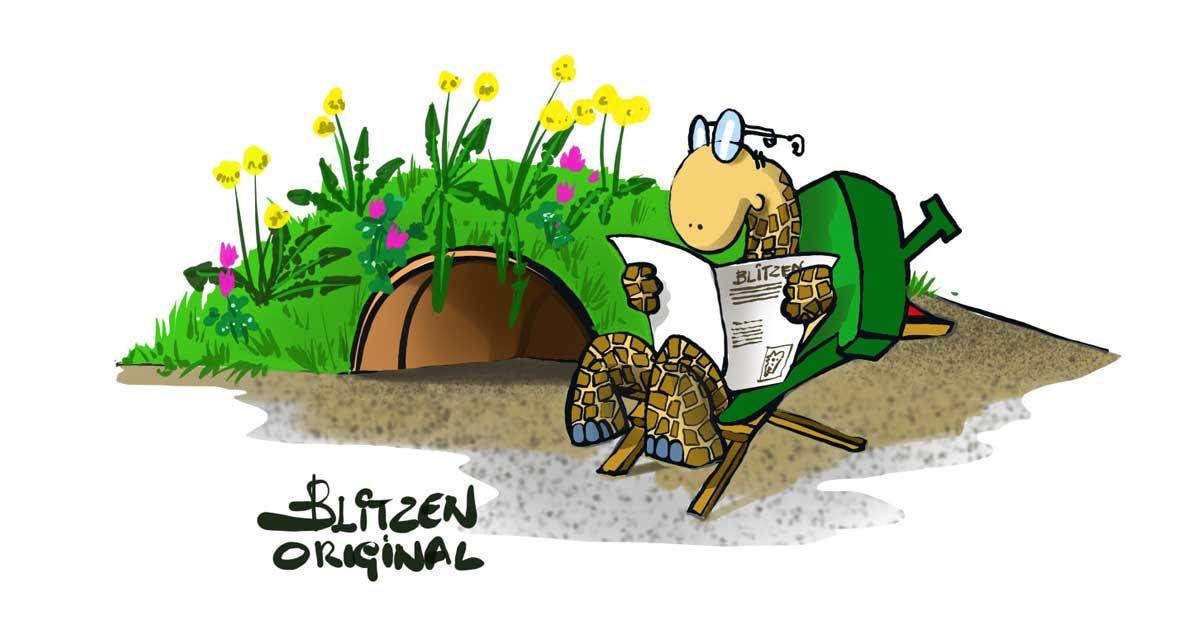 Casetta per Tartarughe di Terra - Disegno raffigurante una Tartaruga che legge il giornate davanti alla sua casetta realizzata con un vaso di coccio