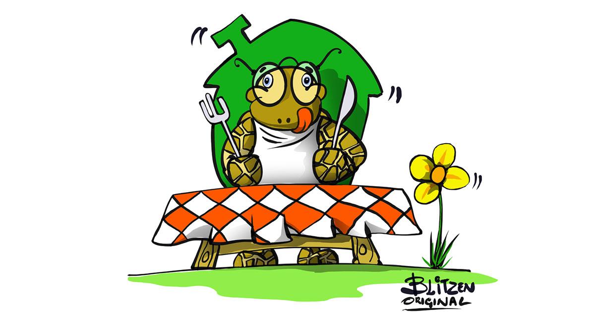 Disegno di una Tartaruga di Terra a tavola mentre aspetta di mangiare - Blitzen