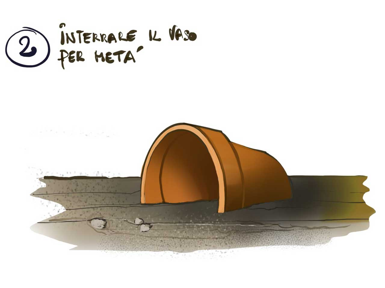Casetta estiva a costo zero per tartarughe di terra blitzen for Tartaruga di terra maschio o femmina