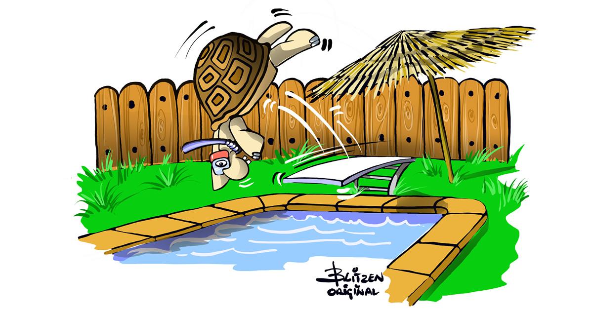 Disegno Blitzen raffigurante un recinto per Tartarughe di terra con una piscina
