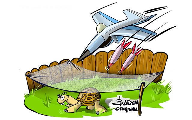Disegno Blitzen raffigurante una recinzione per tartarughe di terra protetta con una rete sopra