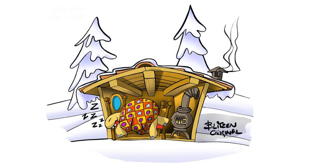 Tartaruga di Terra in letargo nel suo rifugio - Disegno Blitzen