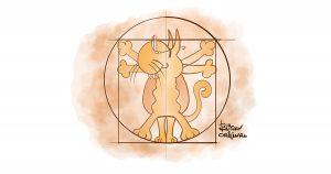 Anatomia con Gatto Vitruviano - Disegno Blitzen
