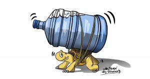 Illustrazione che raffigura una tartaruga che trasporta una bottiglia d'acqua gigante - Blitzen by Vitamina B