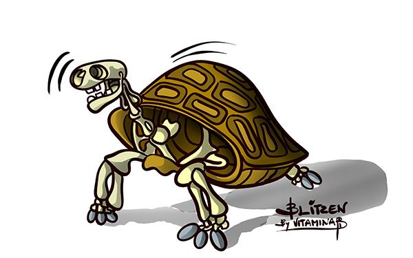 Illustrazione che raffigura uno scheletro di tartarugha - Blitzen by Vitamina B