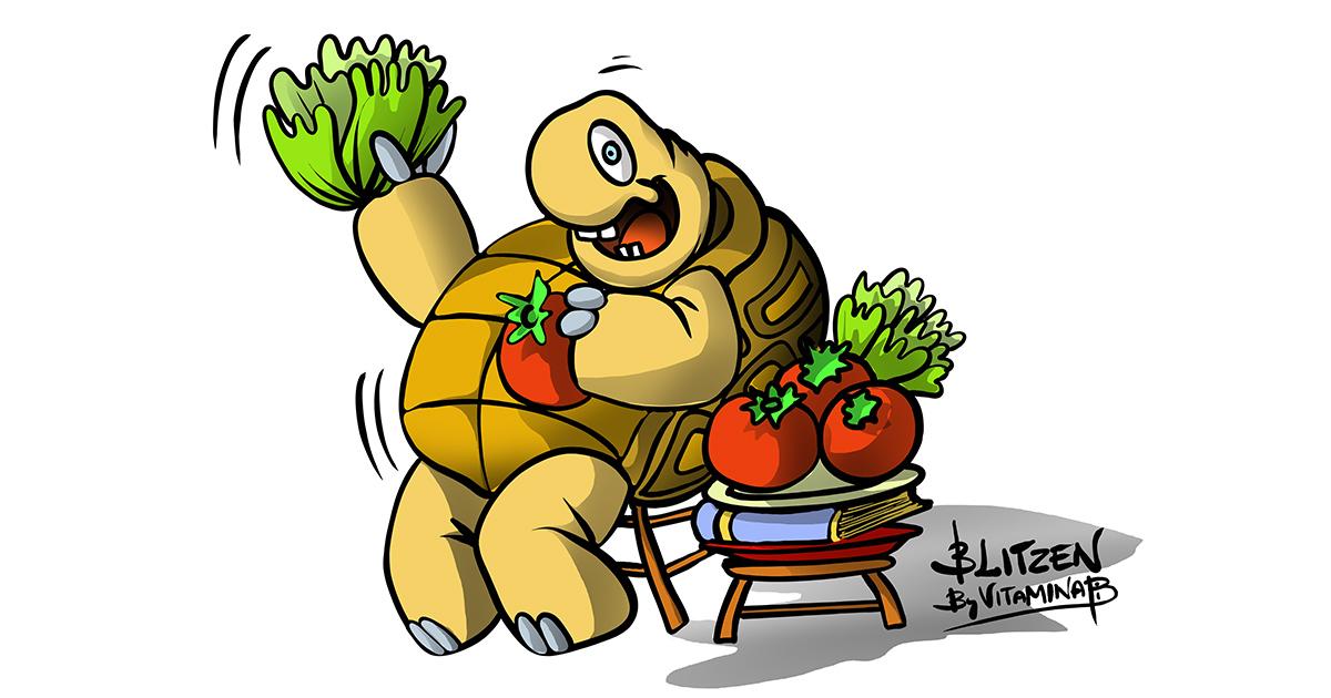 Illustrazione che raffigura una tartarugha che si abbuffa di lattuga e pomodori - Blitzen By Vitamina B